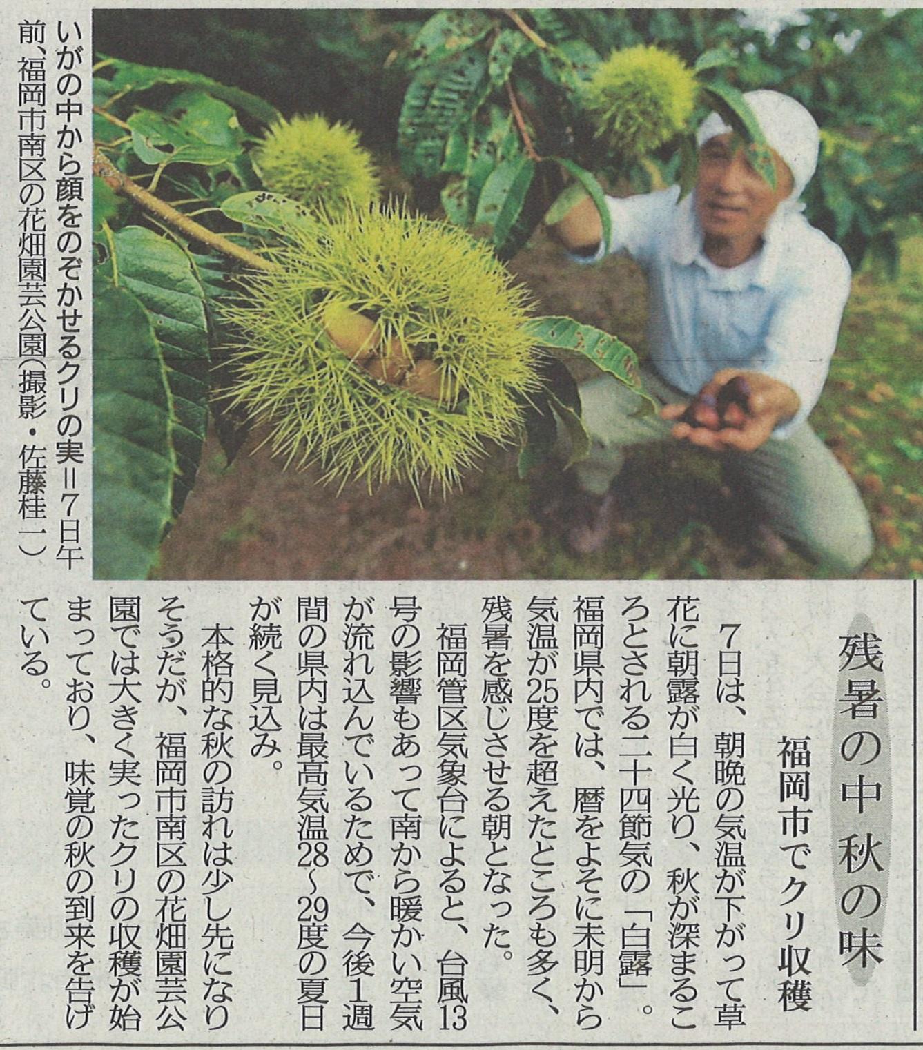 西日本新聞社 9月7日夕刊