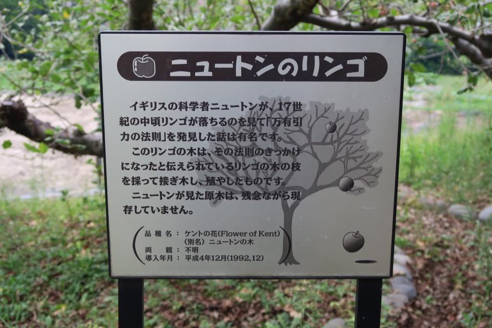 ニュートンリンゴ2