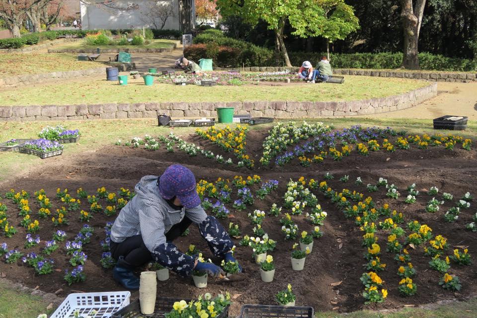 花畑園芸公園花壇広場2